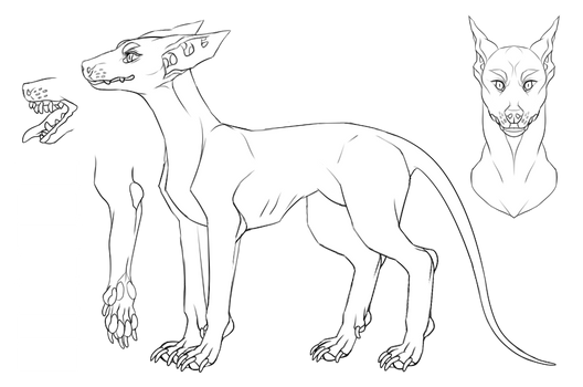 Insol Hound: Specie Guide (ON HIATUS)