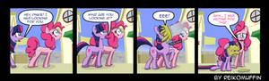 Pony Shorts - Pie Face