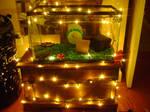Hamster Home by rainbowxwalrus