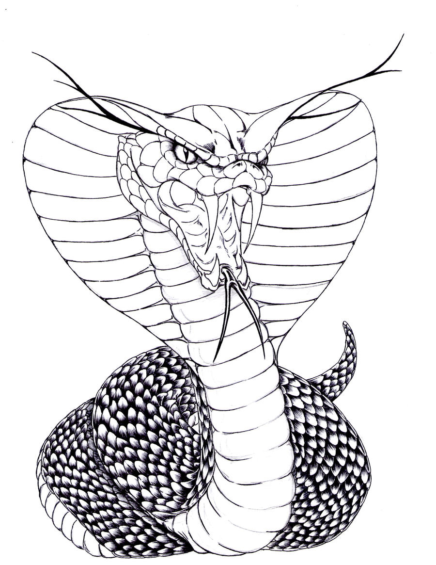 Egyptian Cobra Snake Drawings Sketch Coloring Page
