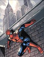 spiderman by kieranoats