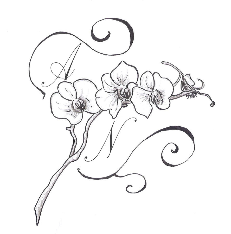 Orchid Drawing Tattoo