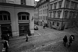 calles by dafni