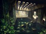 Abandoned Mayan Camp