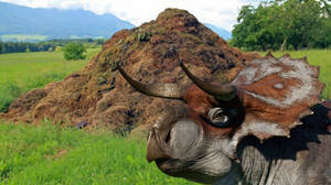 Jurassic Aftermath: Nasutoceratops Manure