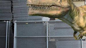 Jurassic Aftermath: Giganotosaurus Fighting Exile