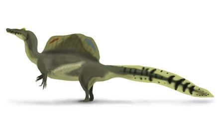 Colored Drawing (Detailed) - Spinosaurus by YellowPanda2001