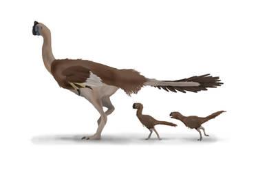 Colored Drawing (Detailed) - Oviraptorid Family by YellowPanda2001