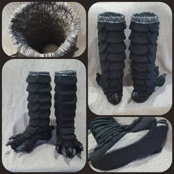 Black Bird Legs