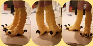 Yellow bird (Harpy) legs