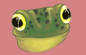 Frog by Midori-Valentine