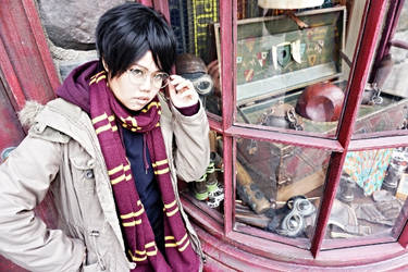 HP-Hey Mr Potter