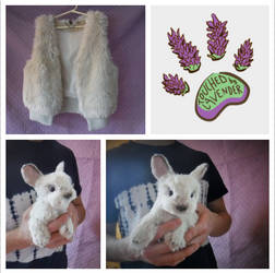 TBL RECYCLED CLOTHING bunny rabbit
