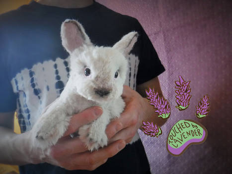TBL RECYCLED CLOTHING bunny rabbit 2