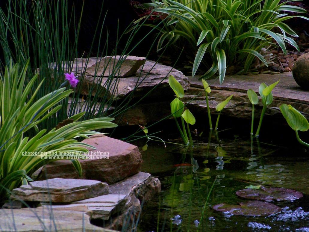 Small koi pond by jamdebris on deviantart for Koi pond small