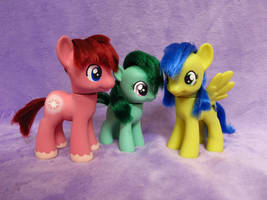 Custom Toy Family