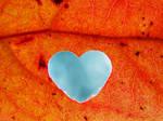 Life Running Through My Veins by ImLauraa