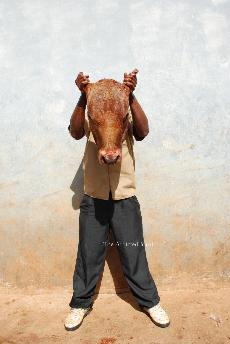 Cow Head by afflictedyard