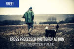 Free Cross Processed Photoshop Actions