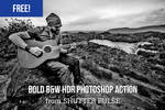 Free Bold Black and White HDR Photoshop Action