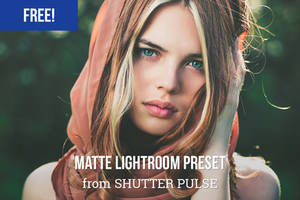 Free Matte Lightroom Preset by shutterpulse