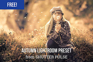Free Autumn Lightroom Preset by shutterpulse