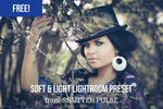 Free Soft and Light Lightroom Preset