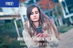 Free Winter Lightroom Preset