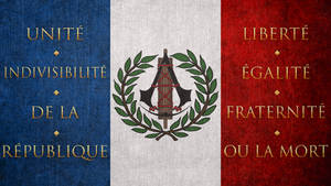 Assassin's Creed: Unity Flag