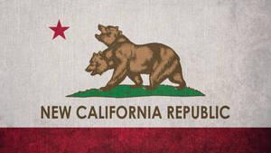 FALLOUT: Flag of the New California Republic