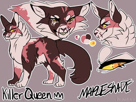 Warrior Cats| Mapleshade Ref by DragonWarriorCat
