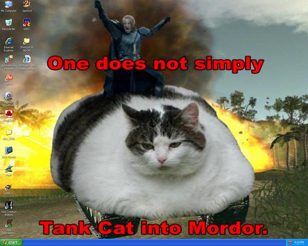 TANK CAT - Desktop by genex
