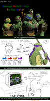 Teenage Mutant Ninja Turtles: Fan Meme_[KB]
