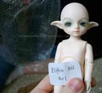 My Sis's BBB Elfkin