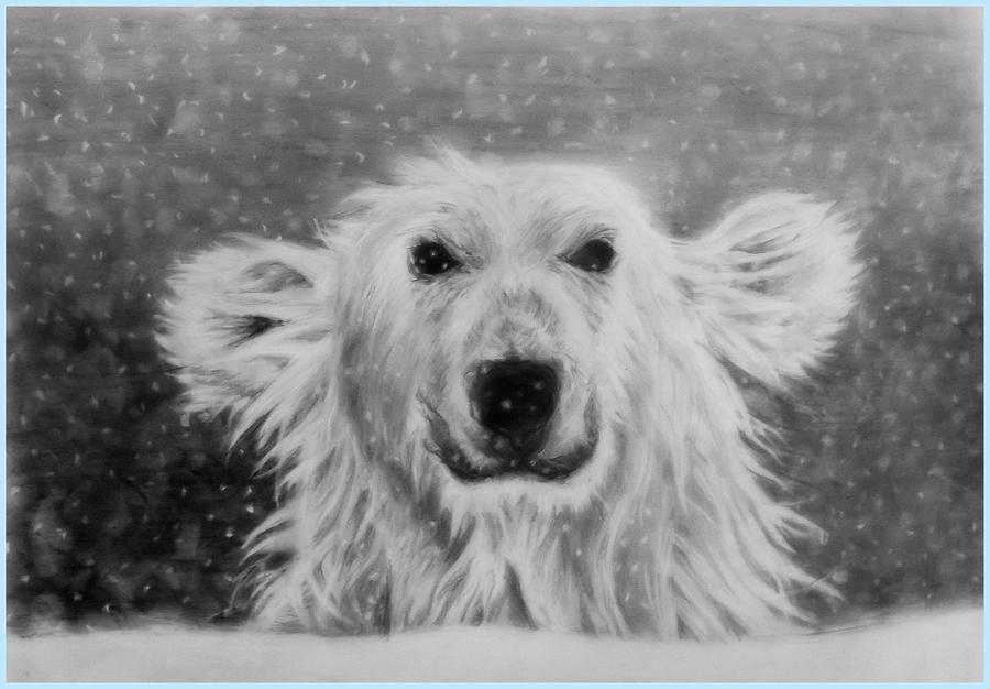 white bear by JAGODA-DRAWINGS