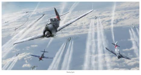 Mauling Eagles by HendrikAviationArt