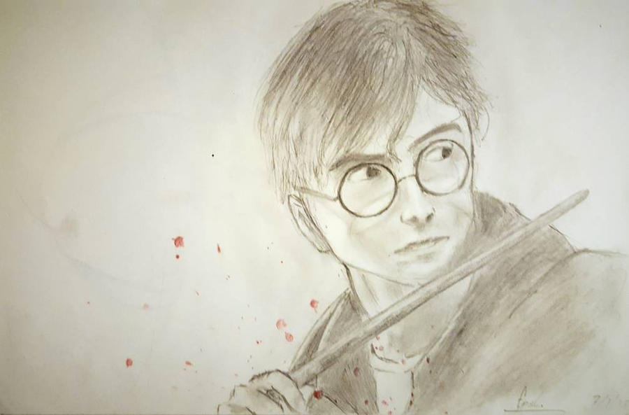 Harry Potter by Fruisir