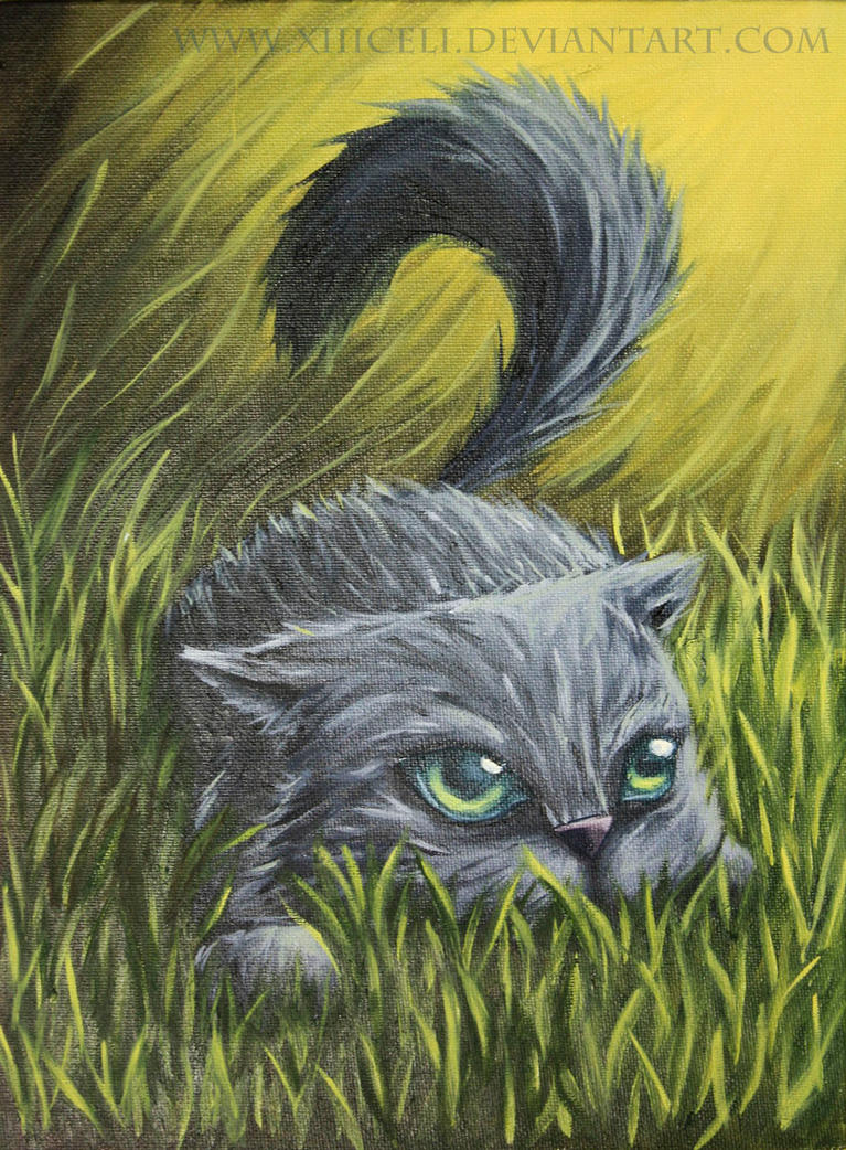 Cat by XIIICeli