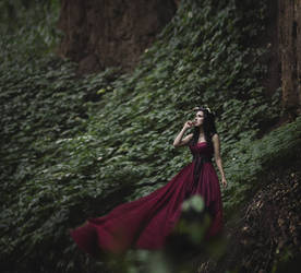 The Mistress of Wilderness