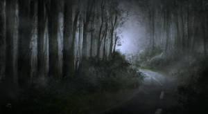 Misty upcountry
