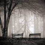 Faded Intensity.Forgotten Life