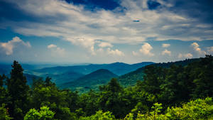 Blue Ridge Vista 1 by pagit