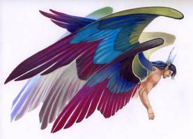 Six wings