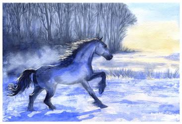 Winter gallop by DappleHack