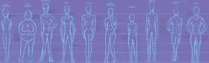 Body type chart - female