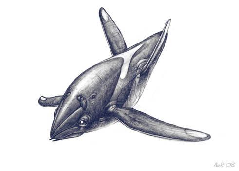Aquatic Alien Sketch