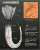 Birrin Evolution - Basketworms by Abiogenisis