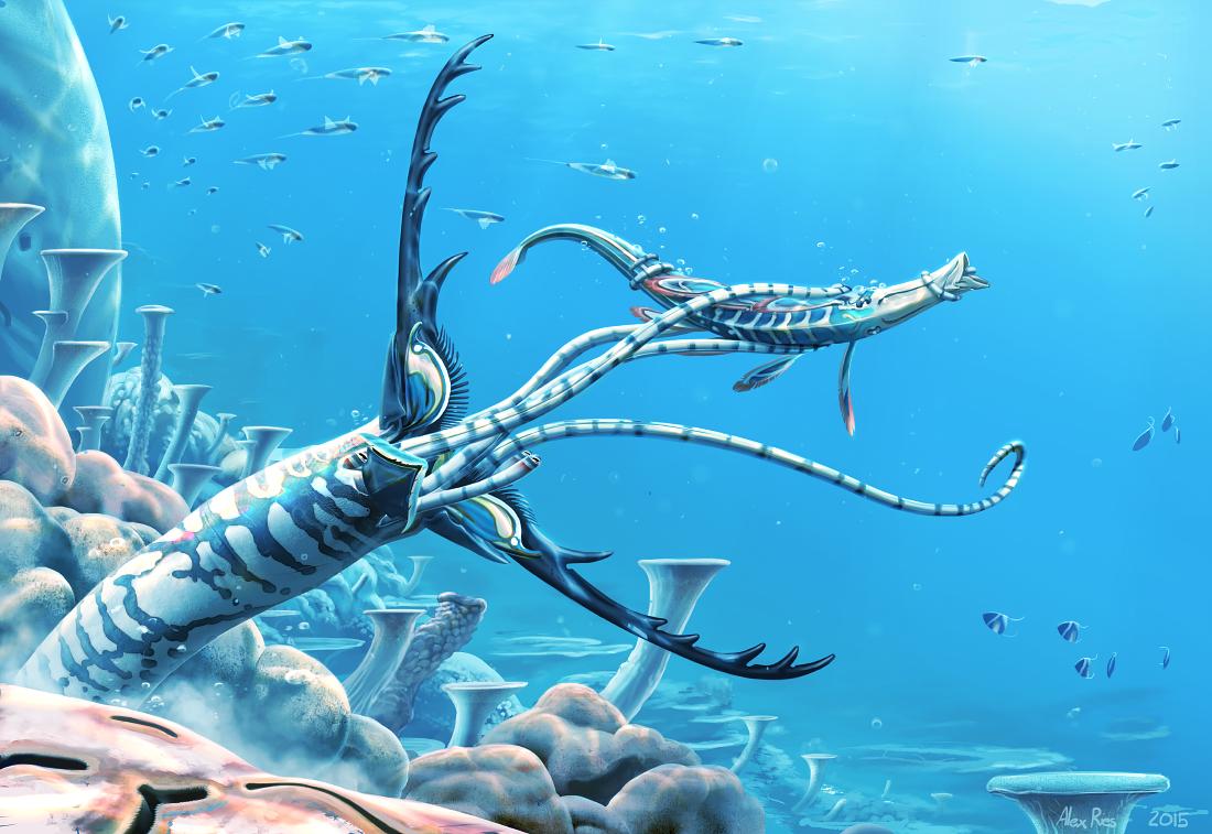 Reef Antlerworm by Abiogenisis