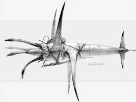 Zero G by Abiogenisis