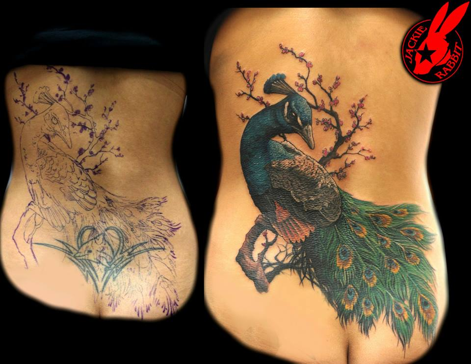 peacock cover up tattoo by jackie rabbit by jackierabbit12 on deviantart. Black Bedroom Furniture Sets. Home Design Ideas
